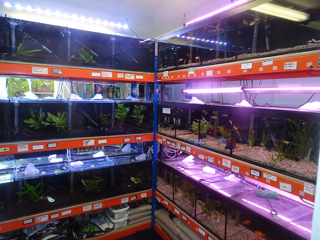 Shop Aquariums small