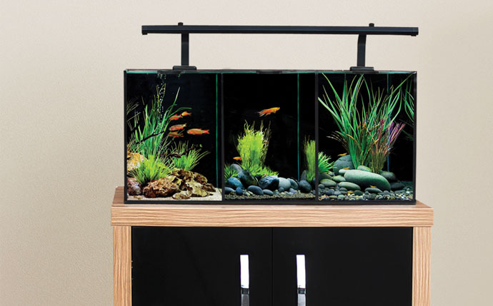 Springs aquatic the betta collection for Betta fish water heater